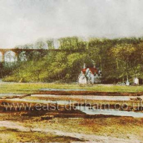 Game Keepers Cottage in Castle Eden Dene opposite the Dene Holme Hotel. Viaduct behind.              Bob Williams