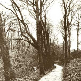Byron's Walk, probably a pathway running from east of the Station to Lady Byron's Well. Early 1900s