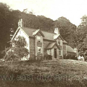 The Garden of Eden, Castle Eden Dene