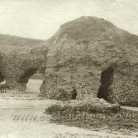 Hawthorn Hives c 1890