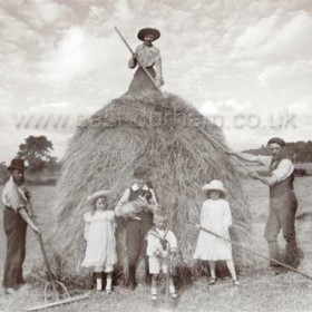 Helping with the harvest at Seaton during WW1.