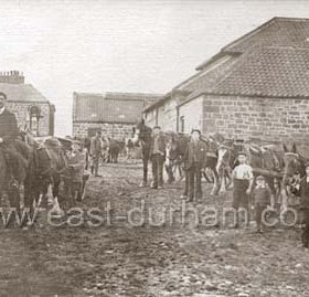 Supposedly Carr House farm 1920's but I do not think is, can anyone place this farm?