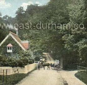 Dene Lodge, Castle Eden. c 1910?